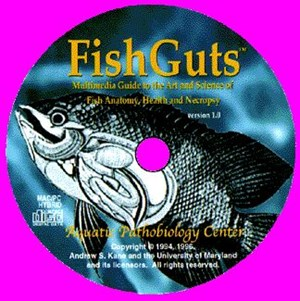 FishGuts (CD-ROM, record 3711)