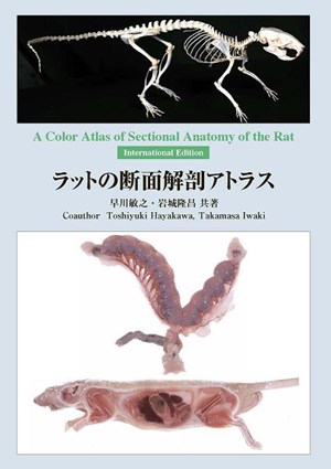 A Color Atlas Of Sectional Anatomy Of The Rat
