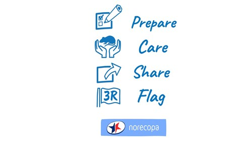 https://norecopa.no/prepare-care-share-flag